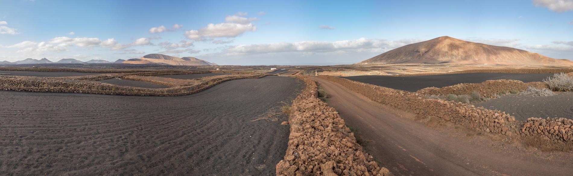 Lanzarote vignes terre volcanique