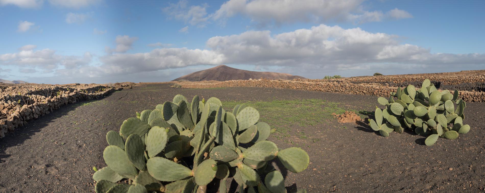 PHOTO Lanzarote Tinajo panoramique