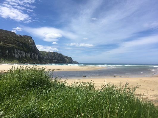 Purakanui Bay, looking North.JPG