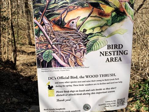 Nestling into their new nest