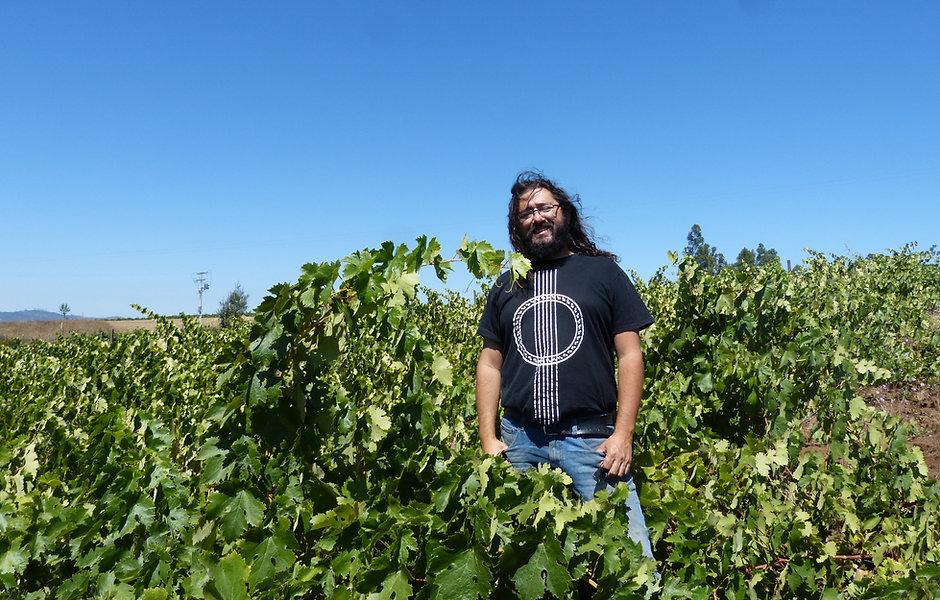 Juan-Ledesma-Vineyards.JPG