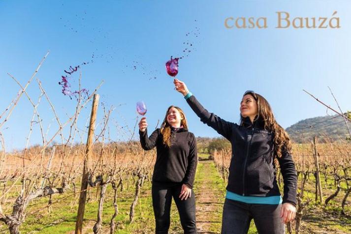 Casa Bauza Natalia vineyard.png