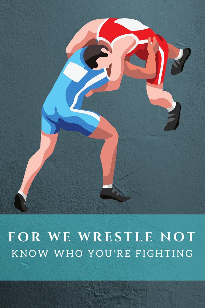 For We Wrestle Not