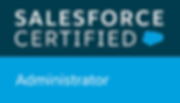 Salesforce Consultanting and Administration