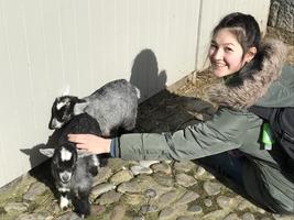 Petting Zoo time outside Dublin