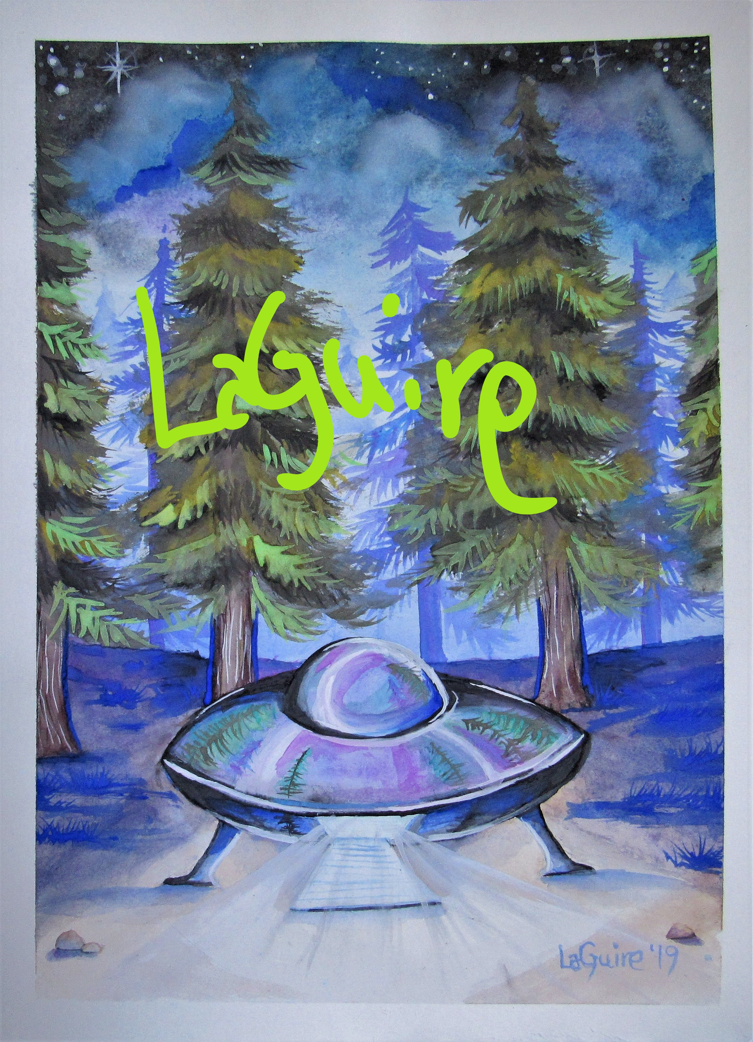 forest UFO