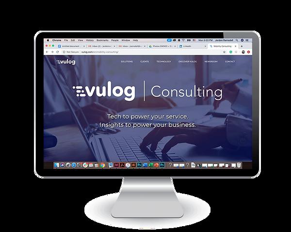 2_Vulog_Consulting_Insitu.png
