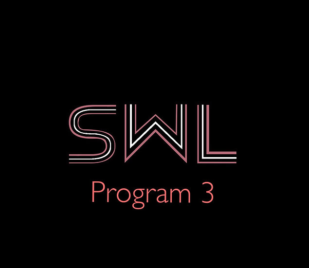 Online Coaching Program 3