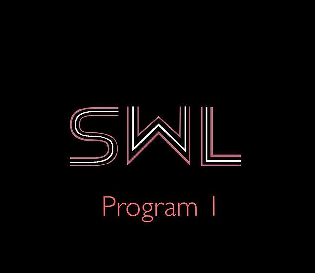 Online Coaching Program 1