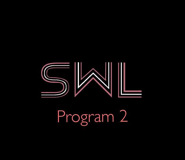 Online Coaching Program 2