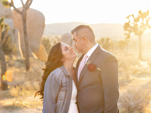Joshua Tree National Park Wedding | Mariana & Pablo