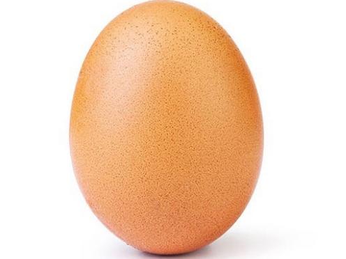 El huevo y una bacteria inesperada