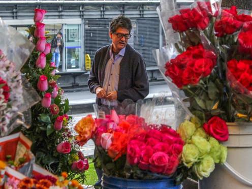 [Fotoperiodismo] Colombia: La estación de las flores