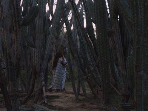 [Crítica] Lapü: el cine vuelve a los indígenas wayúu