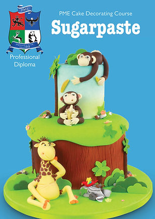 Sugarpaste Course Book - 2018.jpg