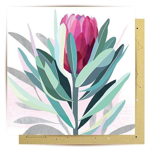 Mini Card Protea