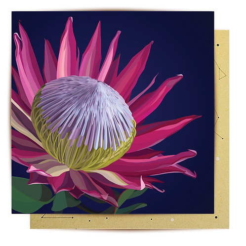 Greeting Card King Protea
