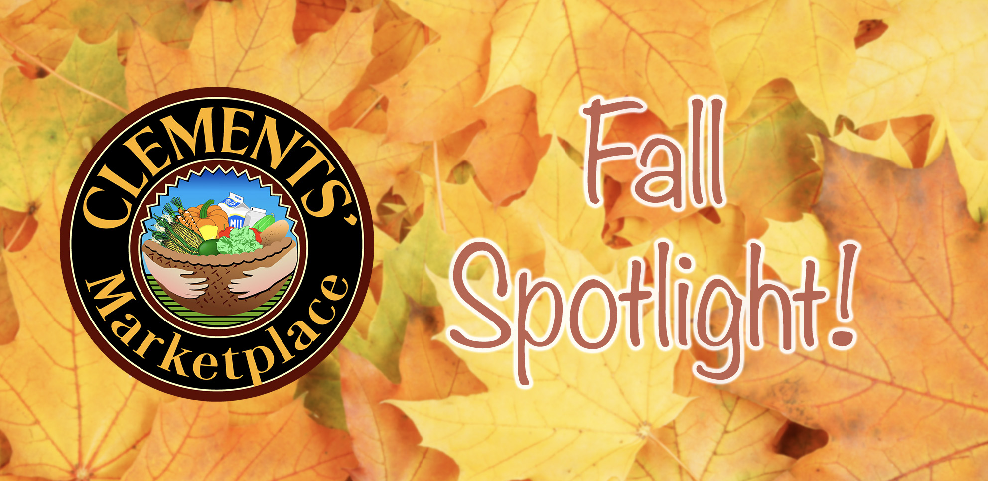 Fall Spotlight!