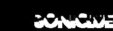 Soniclue logo
