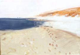 The beach, Baltic