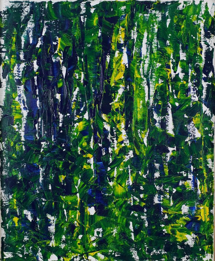 1. Deep Forest