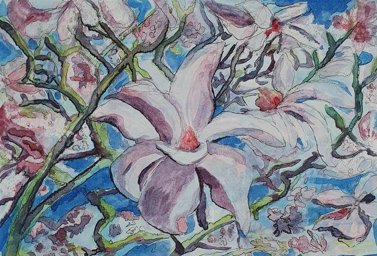 49. Rhododendrum