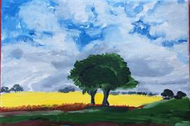 Scotland tree lonely