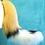 Thumbnail: Wild Dog Tail
