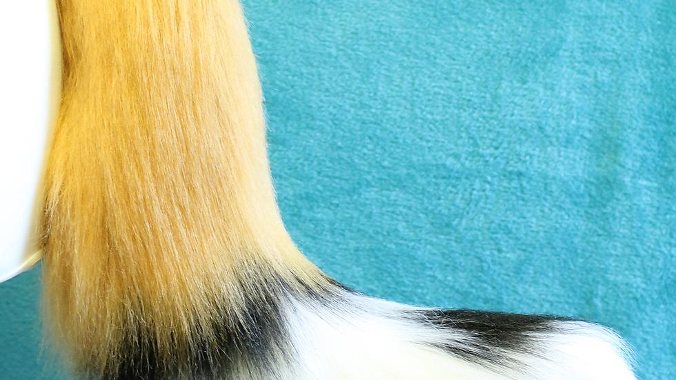 Wild Dog Tail