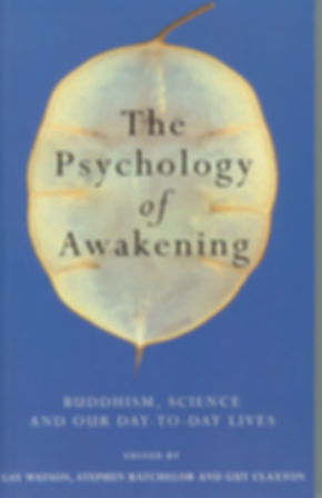 Awakening cover.jpg