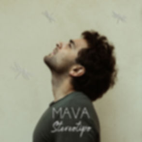 MAVA-STEREOTIPO_cover.jpg