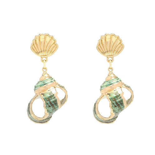 Stunning shell Earings