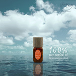 pure essential oil2.jpg