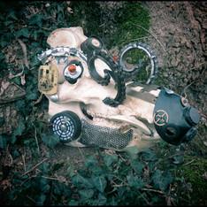 Skull de sanglier Kustom