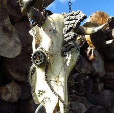 Skull de vache Kustom