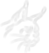 logo blanc2_edited.png