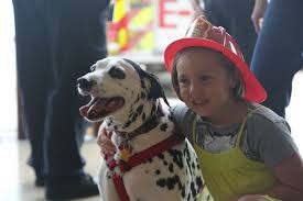 Fire safety and pets