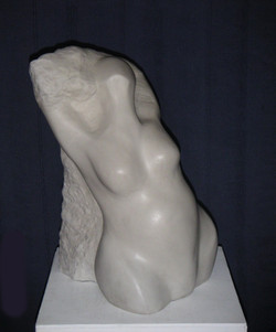 Emergent Form cast