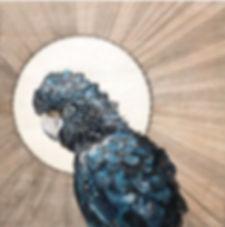 Polly Morwood Black Gallah Painting Collaboration
