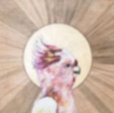 Polly Morwood Pink Gallah Painting Collaboration
