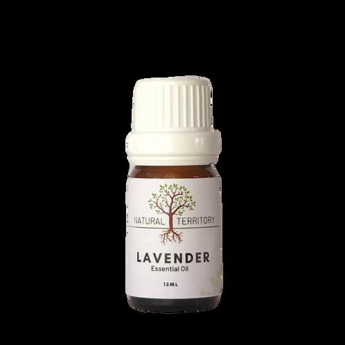 Lavender Essential Oil 12ml