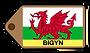 Bigyn Web Badge.png