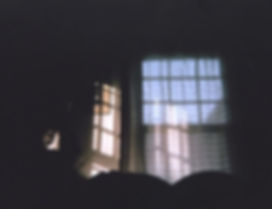_Good_Morning__from_my_disposable_camera