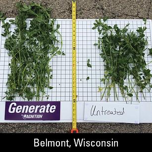 Agnition-Field-Trial-Photos-Belmont-WI.p