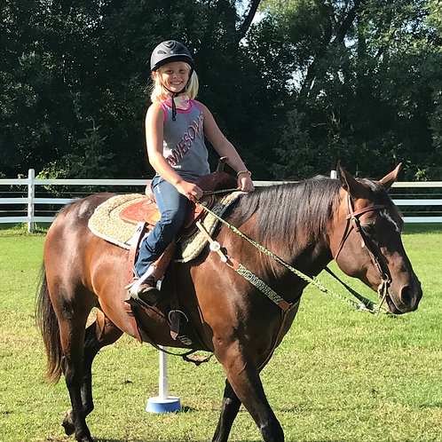 Introductory Horsemanship (Age 8+)