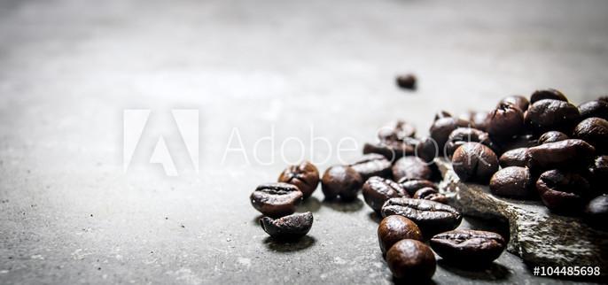 AdobeStock_104485698_Preview.jpeg