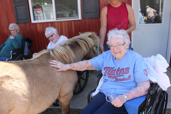 Senior living activities and field trips