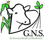 GNS-Logo-1-e1552058863824.jpg