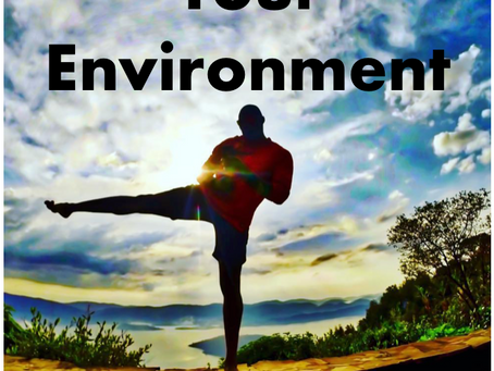 C Double Fitness and I - Your Environment