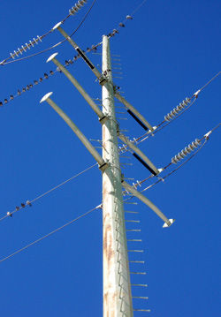 Electric Power Line Pole
